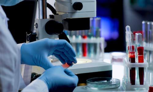 Pathology Management System