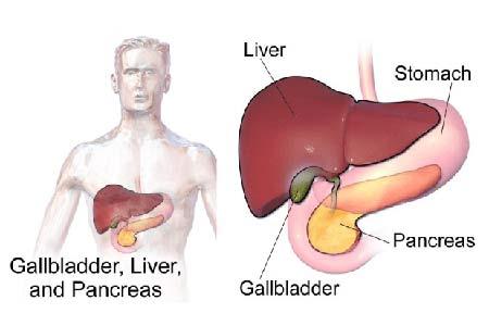 Gallbladder Cancer Symptoms