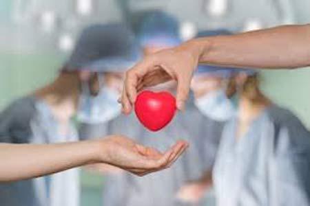 Organ Transplant Preparation