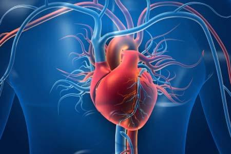 Vascular Disease Diagnosis and Symptoms