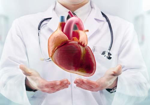 Top Cardiologist consultant India