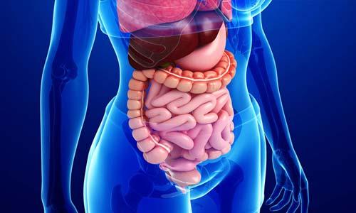 Top Gastroenterologist consultant India