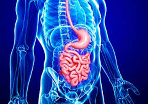 Top Gastroenterology Hospital consultant India