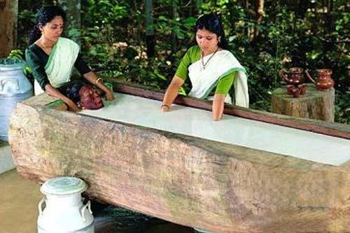 Rajah Healthy Acres in Palakkad